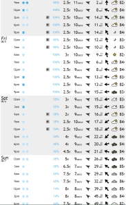 Something ridable from Thursday on perhaps.  Swell and wind chart from magicseaweed.com
