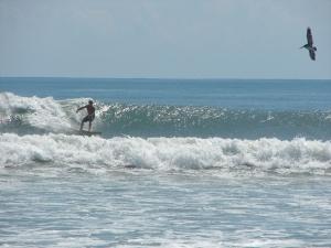 Image 2 of 3, Mike on a shoulder high left, Thursday September 15th, 2011, Tropical Storm Maria, photo by Art