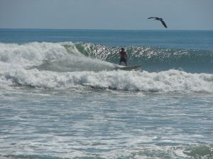 Image 3 of 3, Mike on a shoulder high left, Thursday September 15th, 2011, Tropical Storm Maria, photo by Art