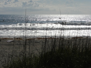 Image 6 of 10 in sequence.  The Sea Oats and the Sun competing for the Lens :)