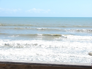 There were some chest high waves today and very fun for a longboard at Hightowers.